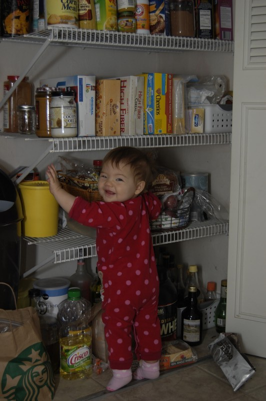 Exploring the pantry