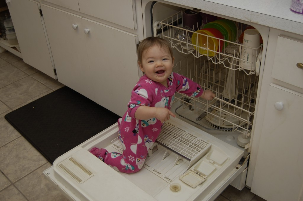Figuring out the dishwasher